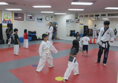 Taekwondo Classes 5