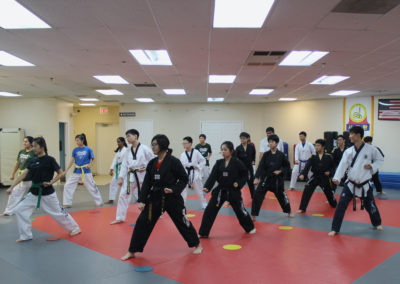 Taekwondo Classes 6