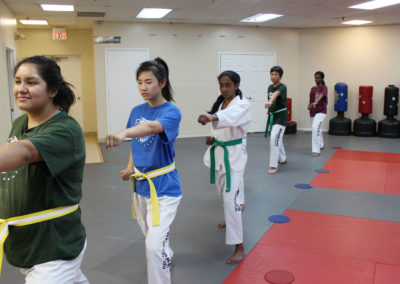 Taekwondo Classes 7