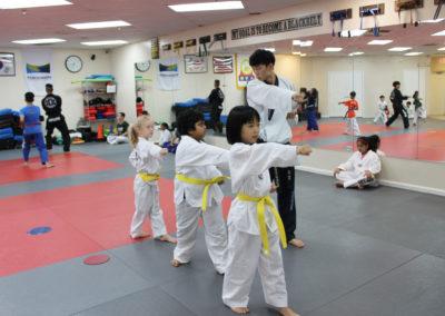Taekwondo Classes 9