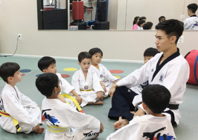 Taekwondo Classes 1