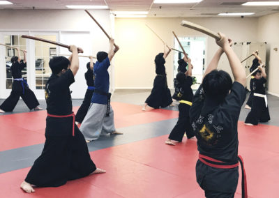 Haidong Gumdo Classes 8