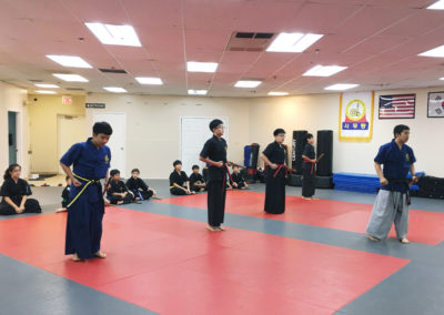 Haidong Gumdo Classes 4