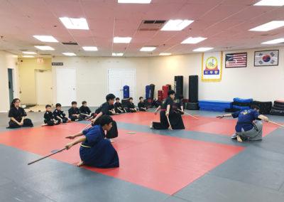 Haidong Gumdo Classes in Fairfax
