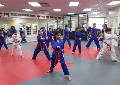 Taekwondo Classes 13