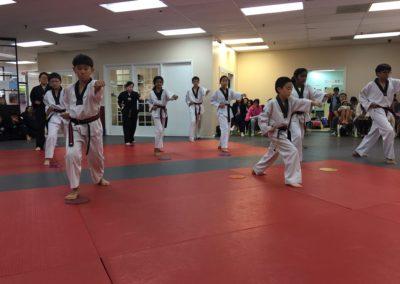 Taekwondo Classes 2